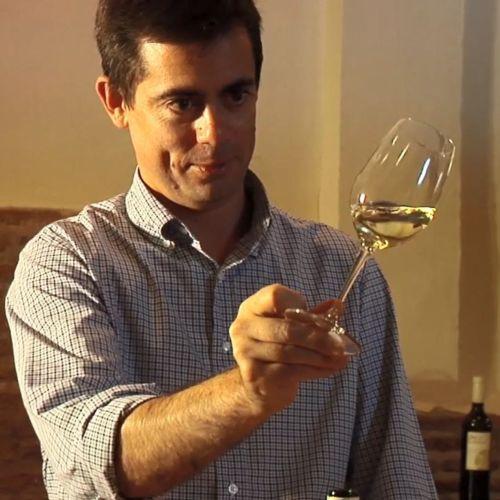 Pablo del Villar - Bga Hnos del Villar (Spain)