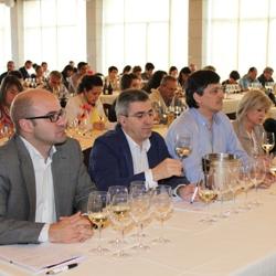 IV Jornada Diam (Spain) : Women & Wine